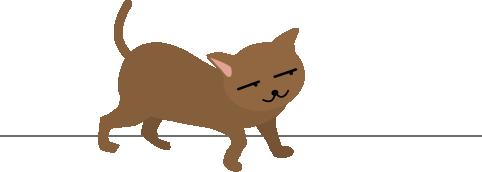 猫がチラ見