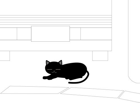 黒猫が居た