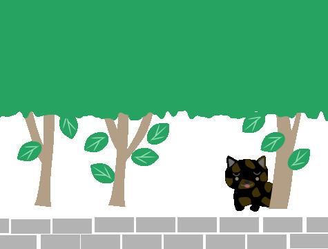 木の下に子猫