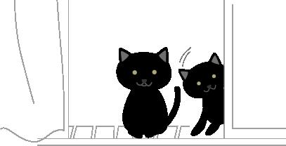 黒猫と子猫1