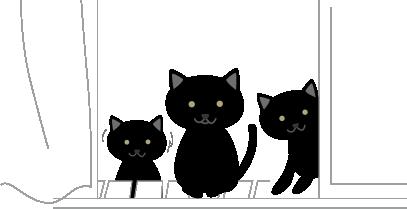 黒猫と子猫2