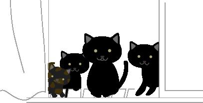 黒猫と子猫3