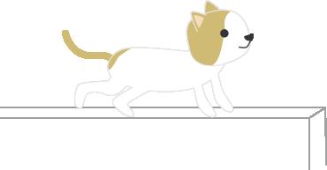 猫(オジサン)