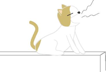 猫(大あくび)