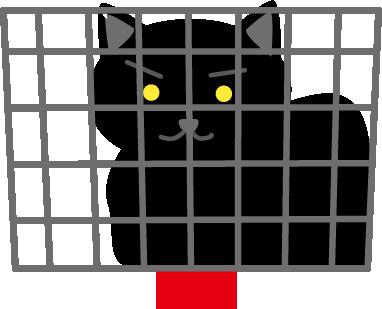 自転車のカゴに黒猫