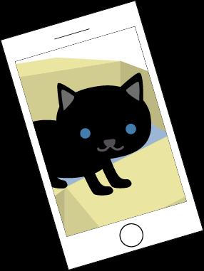 iPhoneに猫の写真