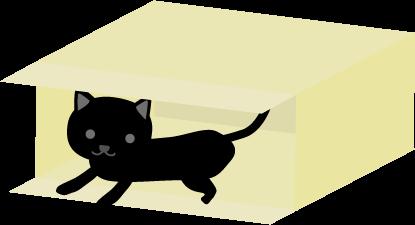 黒猫(子猫)in ダンボール