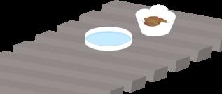 猫のご飯とお水