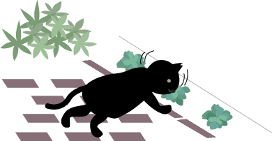 葉っぱをスンスンする猫
