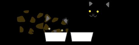 猫(兄と妹)