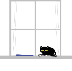 縁側に黒猫