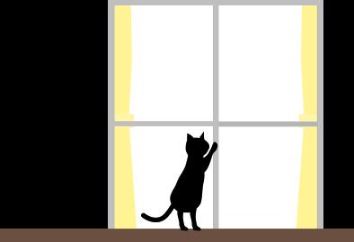 黒猫(オカン)