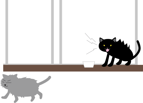 黒猫と喧嘩