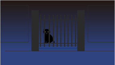 玄関で猫が待ってる