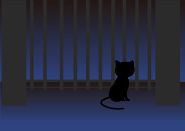門扉のところでたたずむ黒猫