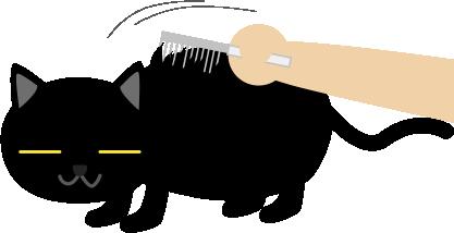 黒猫の毛を漉く