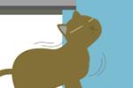 猫が背中をゴシゴシ