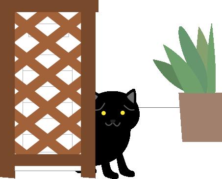 離れて様子を見てる黒猫