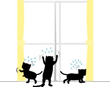 外に出たい黒猫