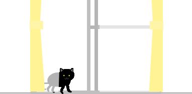 黒猫が来る