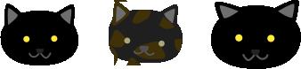 地域猫たち