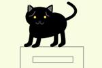 猫が給湯器の上に