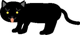 舌を出す黒猫