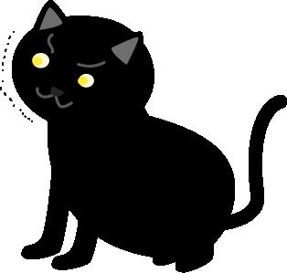 黒猫が驚いた顔で見てくる
