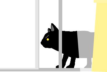 警戒する黒猫
