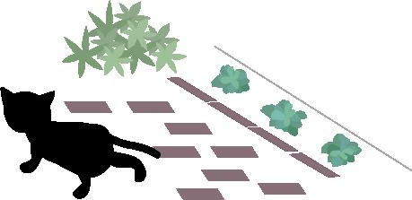 そそくさと逃げる黒猫