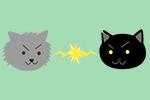 縄張り争いする猫