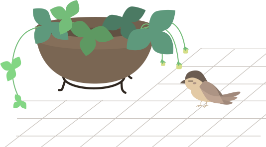 いちごの苗の横にスズメ
