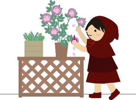 薔薇の選定