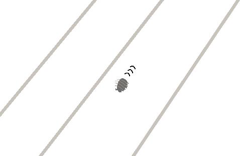 脱走するダンゴムシ