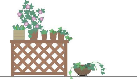 ベランダの鉢植え