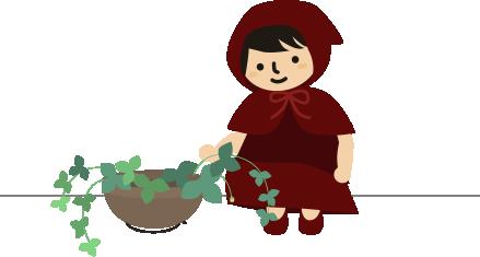 苺のお世話をする