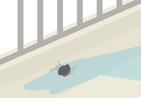 水に流される虫