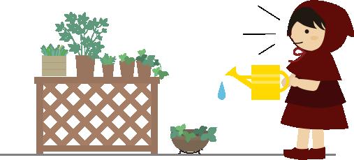 ベランダの植物に水をあげる