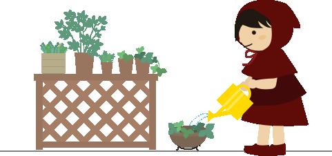 植物に水をあげる