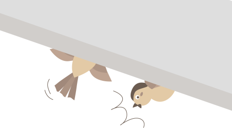 スズメに気づかれた!