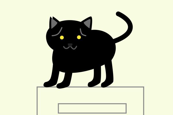 ガス給湯器の上に猫