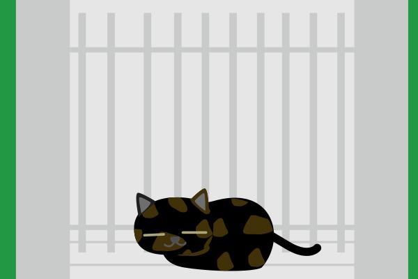 門扉の前の錆猫