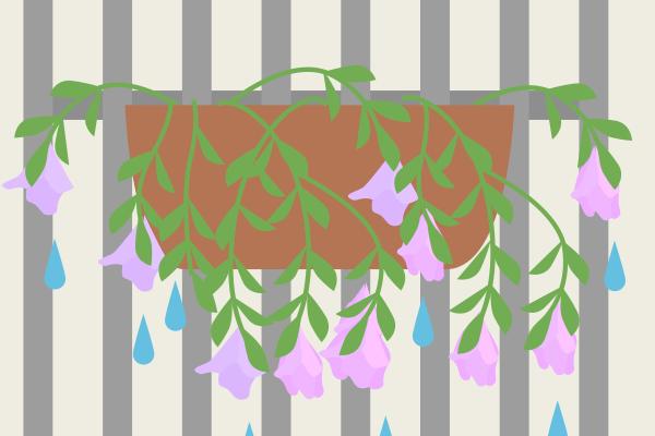雨で倒れる花