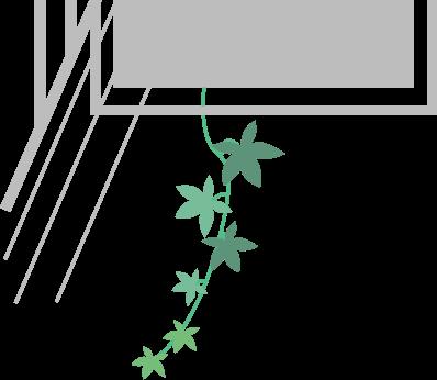 隣からつる植物